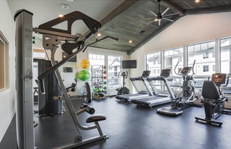 Timberridge-Gym